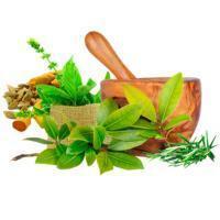 Лечебно-оздоровительные препараты